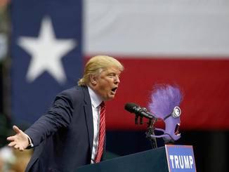 Wenn sich nicht bald ein Schuldiger findet, rastet Donald Trump endgültig aus.