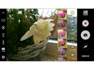 Im Pro-Modus können verschiedene Live-Filter angewendet werden.