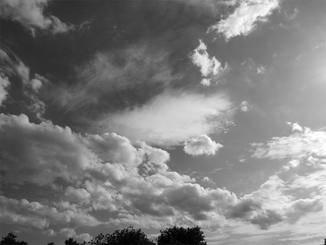 Im monochromen Modus entstehen Bilder mit Leica-Flair.
