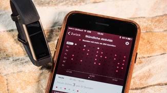 Überprüfe in der Fitbit-App, ob Du auch jede Stunde mindestens 250 Schritte gelaufen bist.