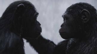 """Die Affen """"menscheln"""": Romantische Szenen mit den animierten Affen sind gewöhnungsbedürftig."""