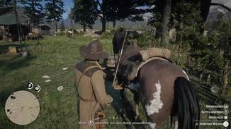 Jedes Pferd bietet Unmengen an Interaktions-Möglichkeiten.