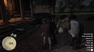 Das eigene Pferd benötigt viel Pflege.