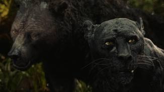 ... während ihn Balu und Baghira auf die Gefahren des Dschungels vorbereiten.