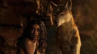 Mogli wurde von Wölfen aufgezogen, ....