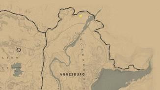 Du findest den armen Spinner in der nördlichsten Spitze von Annesburg.