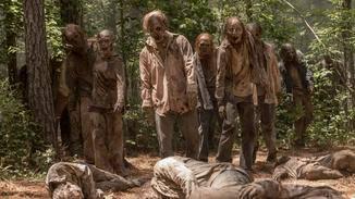 The Walking Dead Zombies
