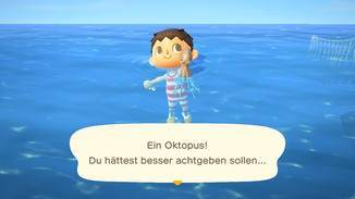 animal-crossing-new-horizons-meerestiere-fangen