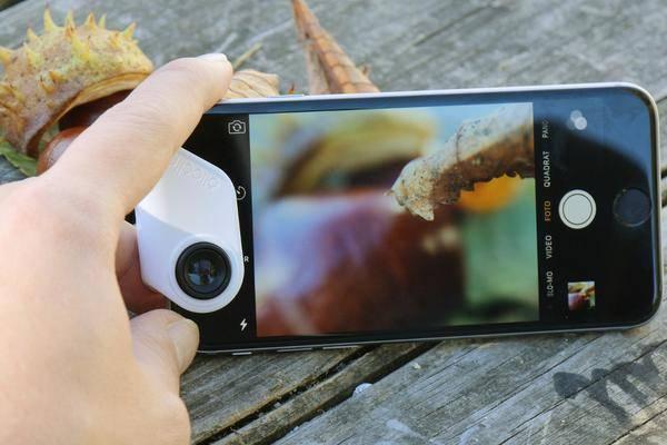 Kleines ganz groß: 6 wichtige Tipps für die Makrofotografie