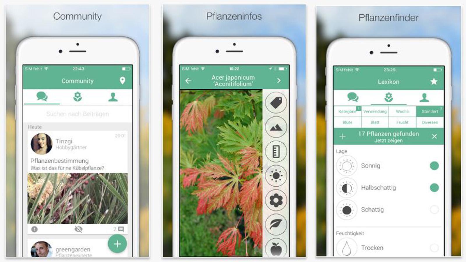 pflanzen bestimmen: 6 nützliche apps für naturliebhaber
